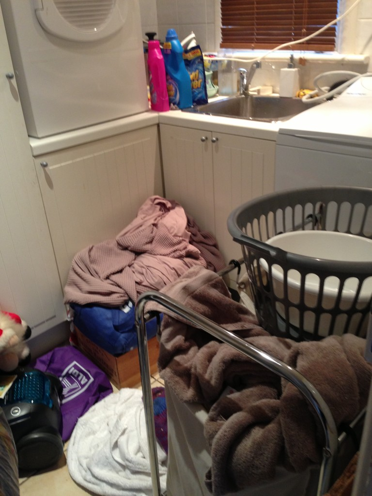 Laundry Clutter Before 1